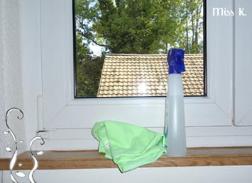 Fenster-Reinigungsmittel